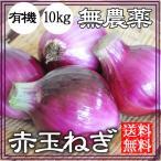 赤玉ねぎ 10kg 無農薬 送料無料 和歌山 グリーンジャンクション