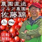 さくらんぼ  佐藤錦 L 1kg  父の日 送料無料 フルーツ 果物 ギフト 山梨産 農園直送 ギフト マルア農園 観光地応援