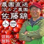 さくらんぼ 佐藤錦 L 500g 送料無料 父の日 フルーツ 果物 ギフト 農園直送 マルア農園 観光地応援