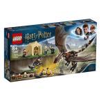 レゴ(LEGO) ハリーポッター ハンガリー・ホーンテールの3大魔法のチャレンジ 75946