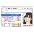 AKB48 小嶋陽菜●プラ免許証カード●桜の木になろう●ファングッズ