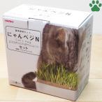 【30】 ハリオ 猫草栽培キット にゃんベジ 陶器製容器+ネコ草 リフィル2個 セット モダン お洒落 ねこ草