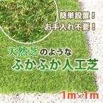 超高密度 リアル人工芝 1m×1m ロールタイプ 3.5mm 芝生 お庭 ベランダ 透水性 保水性 カット/ふかふか人工芝