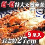 海老 「天然エビ シータイガー9尾」 超超特大 業務用 約27cm 144g ×9尾