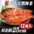 海老 「天然エビ シータイガー12尾」 超特大 業務用 約25cm 108g ×12尾