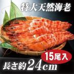 海老 「天然エビ シータイガー15尾」 特大 業務用 約24cm 87g ×15尾