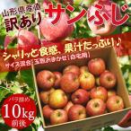 山形産 訳あり サンふじ 約10kg バラ詰め ※りんご、林檎、リンゴ、ふじ、山形産