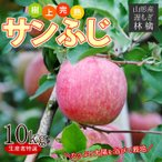 送料無料 遅もぎサンふじ 10kg箱 24〜40玉前後 樹上完熟のりんごを産地より直送