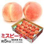 ミスピーチ 白桃 約5kg(18〜24玉前後) ※白桃、福島県産、献上桃、もも、モモ、ピーチ
