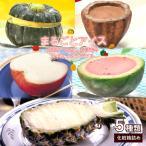まるごと フルーツ アイス 5種類 セット かぼちゃ1個 スイカ1個 りんご1個 パイナップル1個 カカオショコラ1個 冷凍 アイス シャーベット 送料無料 イベント