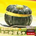 まるごと かぼちゃ アイス 3個 セット 敬老の日 イベント 贈答 ギフト 誕生日 パーティー 送料無料 冷凍
