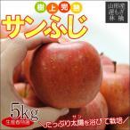 遅もぎ サンふじ 約5kg 12〜20玉前後 送料無料、樹上完熟のリンゴを産地直送でお届けします。