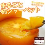 送料無料!まるごと柿シャーベット約2kg(12-20玉前後)
