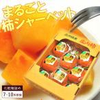 送料無料!贈答用まるごと柿シャーベット(8-10玉前後)