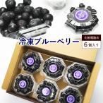 冷凍 ブルーベリー 約600g (100g×6個) ブルーベリー フルーツ 果物 指定日対応 送料無料 サイズ混合 母の日 2021 アイス