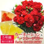 母の日 ギフト 花 カーネーション & フルーツ ゼリー さくらんぼ ラフランス 白桃 3種類 セット 5号鉢 赤 レッド 鉢植え 送料無料
