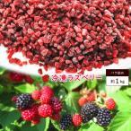 冷凍 ラズベリー 約1kg ベリー フルーツ クラッシュ 果物 指定日対応 送料無料 家庭用