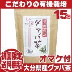 有機栽培 国産グァバ茶15包♪初回限定送料無料お試し♪