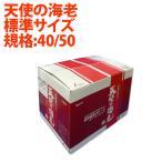 Shrimp - 天使の海老 小サイズ1Kg箱(規格:40/50)を10箱まとめ買い