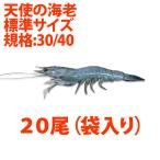 Shrimp - 天使の海老 標準サイズ20尾小分け(規格:30/40)