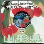 第33回・地方自治法施行60周年 『愛媛県』 千円銀貨 Aセット