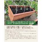 ウリン材製メロン畑大型プランターキット/サイズ:W1800xD724xH750【ウリン材のほぼ腐らない天然木、幅1.8mの大型プランター】