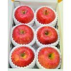 送料無料 福島県産 サンふじ2kg(5玉〜7玉) リンゴ 林檎 りんご 菱沼農園