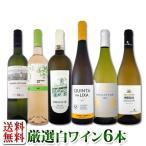 送料無料第98弾 当店厳選 これぞ極旨辛口白ワイン 『白ワインを存分に楽しむ 』味わい深いスーパー・セレクト白ワインセット 6本 wine