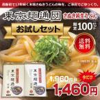 東京麺通団 さぬき純生うどん かけ用 2人前2パック入り 限定おためし うどんつゆ付 送料無料