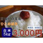 ひとめぼれ 5kg 白米 平成28年産 宮城県登米産 農薬・化学肥料不使用