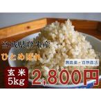 5のつく日限定クーポン有! ひとめぼれ 5kg 玄米 平成28年産 宮城県登米産 農薬・化学肥料不使用