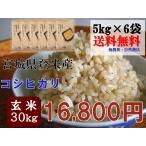 新米 2年産 コシヒカリ 30kg (5kg×6袋) 玄米 送料無料  宮城 登米 米 特別栽培米 農薬・化学肥料不使用