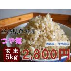 つや姫 5kg 玄米 28年産 宮城県登米産 農薬・化学肥料不使用