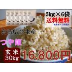 つや姫 30kg (5kg×6袋) 玄米 送料無料  宮城 登米 米 特別栽培米 農薬・化学肥料不使用