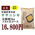 定期便6ヶ月コース:ササニシキ玄米5kg 宮城県登米産