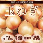 玉ねぎ (1kg:5〜6個)  農薬・化学肥料不使用