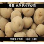 じゃがいも (1kg:5〜6個) 農薬・化学肥料不使用