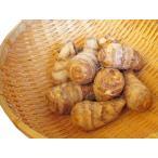 里芋 (500g:8〜10個) 農薬・化学肥料不使用