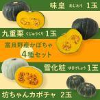 富良野産 かぼちゃ4種セット【5kg】