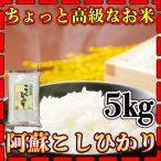 あすつく 新米 高級米 令和元年産 1年産 九州 熊本県 阿蘇地方産 こしひかり 5kg 精白米 コシヒカリ くまもとのお米
