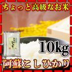 新米29年産九州熊本県阿蘇地方産こしひかり10kg/精白米/条件付き送料無料
