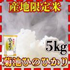 産地限定米新米28年産九州熊本県菊池産ヒノヒカリ5kg/ひのひかり/白米/条件付き送料無料
