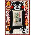 精白米29年産九州熊本県産森のくまさん5kg白米もりのくまさんくまもとのお米くまモン