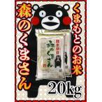 精白米29年産九州熊本県産森のくまさん20kg5kg×4個白米もりのくまさんくまもとのお米くまモン
