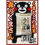 新米29年産九州熊本県産森のくまさん30kg/5kg×6個/白米/条件付き送料無料