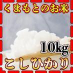 新米28年産九州熊本県産コシヒカリ10kg/白米/5kg×2個/条件付き送料無料