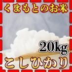 米 20kg 九州 熊本県産 こしひかり 新米 令和2年産 コシヒカリ 精白米 5kg4個 くまもとのお米 kuma-kome