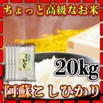 新米29年産九州熊本県阿蘇地方産こしひかり20kg/コシヒカリ/精白米/条件付き送料無料