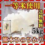 米 5kg 九州 熊本県産 ひのひかり 新米 令和2年産 ヒノヒカリ 5kg1個 送料無料 あすつく 精白米 一等米使用 くまもとのお米 kuma-kome