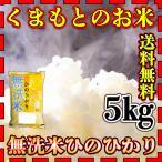 米 5kg 九州 熊本県産 ひのひかり 無洗米 新米 令和2年産 ヒノヒカリ 送料無料 5kg1個 精白米 くまもとのお米 kuma-kome